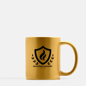 Elevation Academy Ceramic Gold Mug